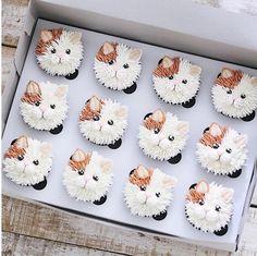 Ich bin dabei, 103 Kommentare - Brooke Haven (brookiescookiesco) en Instag - Food Art - Frost Cupcakes, Cupcakes Chat, Kitty Cupcakes, Animal Cupcakes, Puppy Cupcakes, Kitty Cake, Flower Cupcakes, Cupcakes Design, Kitty Party