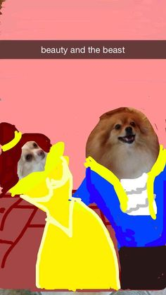 Belle | These Snapchats Of A Dog Turned Into Disney Princesses Are Fantastic