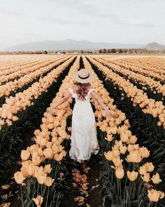 fields of gold Spring Aesthetic, Flower Aesthetic, Aesthetic Yellow, Nature Aesthetic, Aesthetic Girl, Dark Portrait, Foto Art, How To Pose, Belle Photo