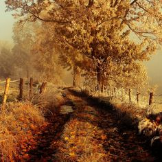 frosty autumn by Sebastian Luczywo on Poland - mountains Rudawy Janowickie Seasons Of The Year, Best Seasons, Autumn Day, Autumn Leaves, Fall Pictures, Fall Season, Beautiful World, Beautiful Places, Beautiful Landscapes