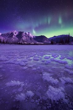 """noisiaz: """" """"Comfortably numb"""" by Jeff Lewis  """""""