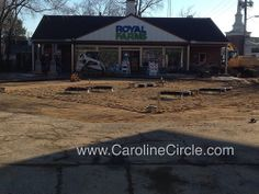 carolinecircle's photostream