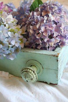 shabby chic hydrangea arrangement in old painted drawer Hortensia Hydrangea, Hydrangea Flower, Hydrangeas, Lilacs, Hydrangea Colors, Rustic Wooden Box, Wooden Boxes, Wooden Box Centerpiece, Centerpieces