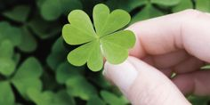 ARE YOU GAMBLING WHEN STARTING A BUSINESS? HOW MUCH LUCK DO YOU NEED?   The article looks into the importance of luck when starting a business and into ways in which you can reduce the variance of your business plans.