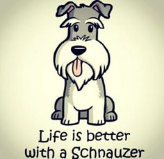 Life is better with a schnauzer.