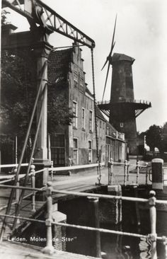 Hoek Oude Heregracht, Langegracht, met de voormalige molen de Stier. ca 1950. Holland, Leiden, Old Pictures, Netherlands, Capri, History, City, The Netherlands, Countries