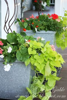 Love the sweet potato vine in this arrangement.
