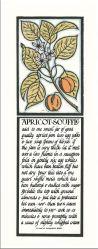 vintage Alice Waters/David Lance Goines recipe prints