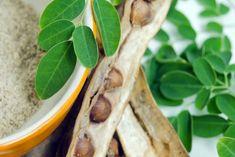 Wszechstronne zastosowanie olejku z drzewa herbacianego | Na zdrowie Tobie Ethnic Recipes, Food, Light Therapy, Meals, Yemek, Eten