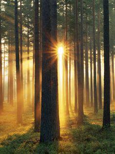 Sunrise. Hope. Peace. New Beginnings...Love these kinda mornings...