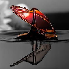When liquids collide – Photographer captures amazing images with high-speed photography