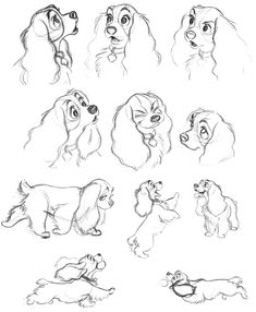Lady and the Tramp is amazing how Disney animators give a cartoon dog . - Lady and the Tramp is amazing how Disney animators give a cartoon dog … - Disney Sketches, Disney Drawings, Cartoon Drawings, Art Drawings, Drawing Disney, Disney Character Sketches, Art Disney, Disney Dogs, Disney Concept Art