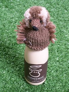 The hedgehog ran away with the Most Creative Hat prize - gaining a whopping of the vote. Congratulations to Mrs Cobb for sending in this brilliant design. Animal Knitting Patterns, Knit Patterns, Crochet Pattern, Free Pattern, Knitted Dolls, Knitted Hats, Crochet Hats, Knitting For Charity, Easy Knitting