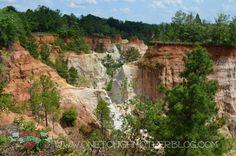 Travel in Georgia - Providence Canyon in Lumpkin, GA #AmericaBound @Sheila Collette Farm