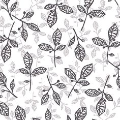 Aviary Studio Pattern