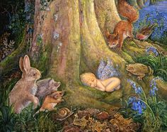 Woodland Wonder by Josephine Wall  Deep in an Enchanted Forest a beech tree tenderly cradles the new arrival in his root arms, and are soon surrounded by many curious forest creatures. They can't wait for the fairy baby to be old enough to join them in all their woodland games.