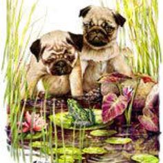 Pugs by the water