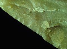 Laporan Penelitian: Alat-Alat Batu Penuh Residu Lemak di Situs Revadim