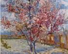 Peach Tree in Bloom (in memory of Mauve), 1888