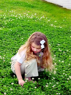 Hunting for 4 Leaf Clovers - I have done that my whole life with great luck!