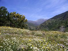 Las Alpujarras, Valle Poqueira, Andalusia. The Alpujarra is the ultimate walkers paradise which has numerous trails where you can experience stunning views and an abundant wildlife. In the mood for a hike?
