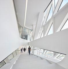 zaha hadid architects port house antwerp belgium designboom