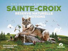 Le vendredi 31 mars ouverture officielle de la saison 2017 pour le Parc Animalier de Sainte-Croix
