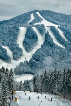 Carpathian Mountains, Bukovel, Ukraine by Alexander Barin- would die to ski… Oh The Places You'll Go, Cool Places To Visit, Places To Travel, Travel Destinations, Travel Europe, Albania, Carpathian Mountains, Vail Colorado, Voyage Europe