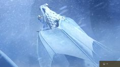 Nieve Wraith | Explora | Como entrenar a tu dragon