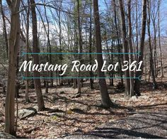 Land Real Estate for Sale in Lake Ariel PA at Mustang Road Lot 361 $15,000If you are looking to build a full-time or part-time home, this is a great ye...