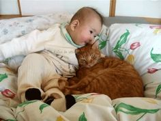 cat kiss baby kisses cat and baby #humor #hilarious #funny #lol #rofl #lmao #memes #cute
