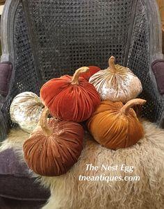Velvet pumpkins in r