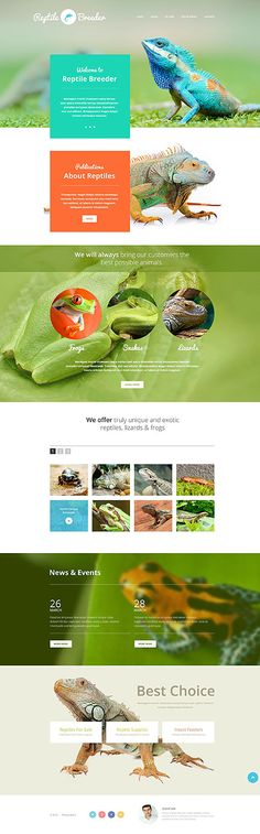Reptile Breeder #website #template. #themes #business #responsive #websitethemes