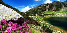 Descopera Romania, 5 munti frumosi pe care merita sa ii strabati: Muntii Retezat.