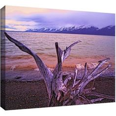 Dean Uhlinger Grand Tetons Storm Light Gallery-Wrapped Canvas, Size: 18 x 24, Blue