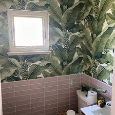 Palm Leaf Wallpaper, Black Wallpaper, Peel And Stick Wallpaper, Vintage Style Wallpaper, Mason Jar Cups, Aqua Background, Paper Dimensions, West Palm Beach, Dark Colors