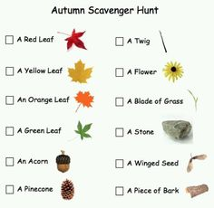 nature scavenger hunt printable | Scavenger hunt