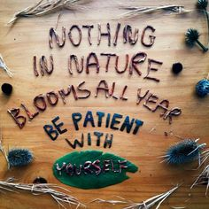 Nothing in nature blooms all year...