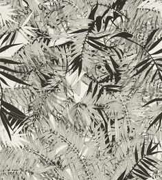 Eden Roc Black (PCL017/01) - Christian Lacroix Wallpapers - An all over exotic wallcovering featuring dense tropical palms. Shown here in black and white. Other colourways are available. Please request a sample for a true colour match.Wide with product.   Paste-the-wall product.
