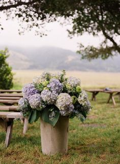 Wedding Ideas: purple-hydranga. The Flowers On Either Side Of The Alter