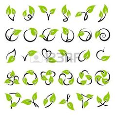 leaf logo: Leaves. Vector logo template set. Elements for design. Icon set.