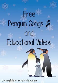 Free Penguin Songs and Educational Videos