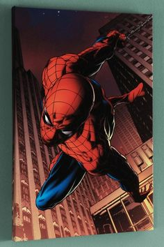 "Amazing Spider-Man #641 Gallery Wrapped Limited Edition - 18"" x 27"""