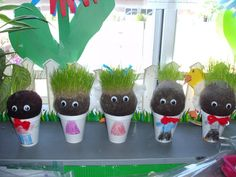 DIY chia pets for the classroom!