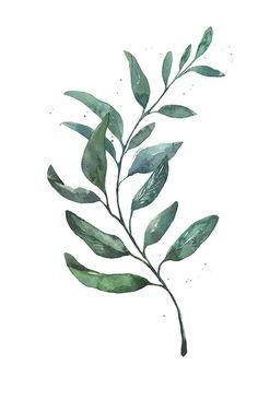 De lunes a domingo: 12 láminas decorativas botánicas para personalizar tus propios cuadros