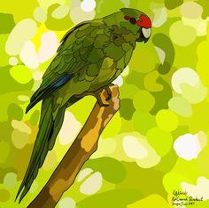 Kakariki (Red Crowned Parakeet) on Photo Block Photo Blocks, Parakeet, Photo Reference, Bird Art, Rock Art, Birds, Crown, Website, Digital