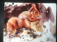 Artist - Lucy Newton , Scotland Gorgeous Red Squirrel