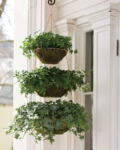 Hang wire baskets planter - cool idea for mini-herb garden