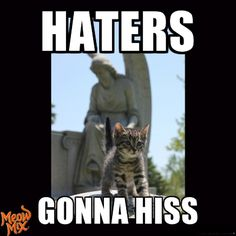 Haters gonna hiss!