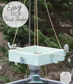Easy Diy Platform Bird Feeder